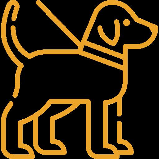Goldimplantation bei Hunden